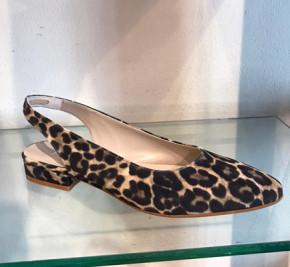 3139-Leopardo