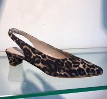 3866-Leopardo